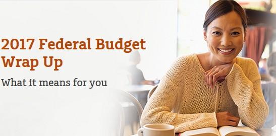 MLC 2017 Budget summary